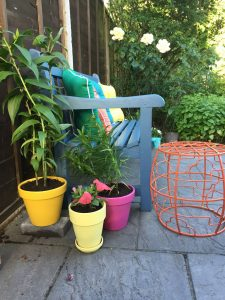 Rattan direct ideas for easy gardening