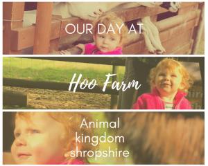 Hoo Farm Animal kingdom the home of Shropshire's big cats : review
