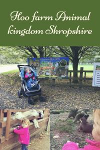 Hoo Farm animal kingdom Shropshire