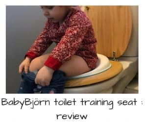Babybjorn toilet training seat