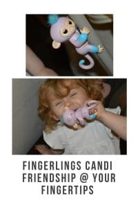 Fingerlings are interactive creatures for children. That respond to touch and sound . They even snore when they are asleep #review #childrensproducts #tinytech