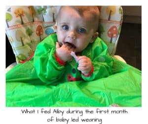 first baby led weaning foods