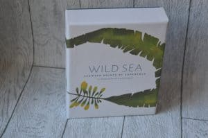 Wild Sea Notecards gift ideas