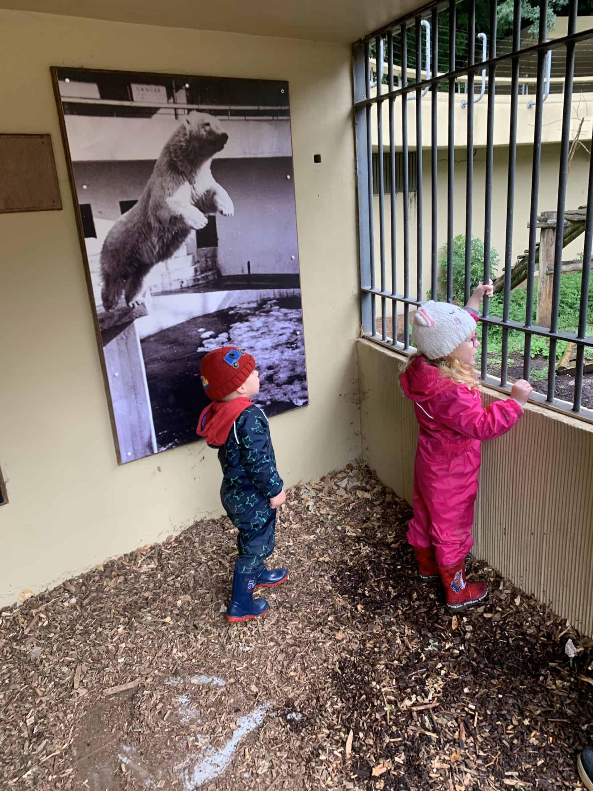 Exploring Dudley zoo