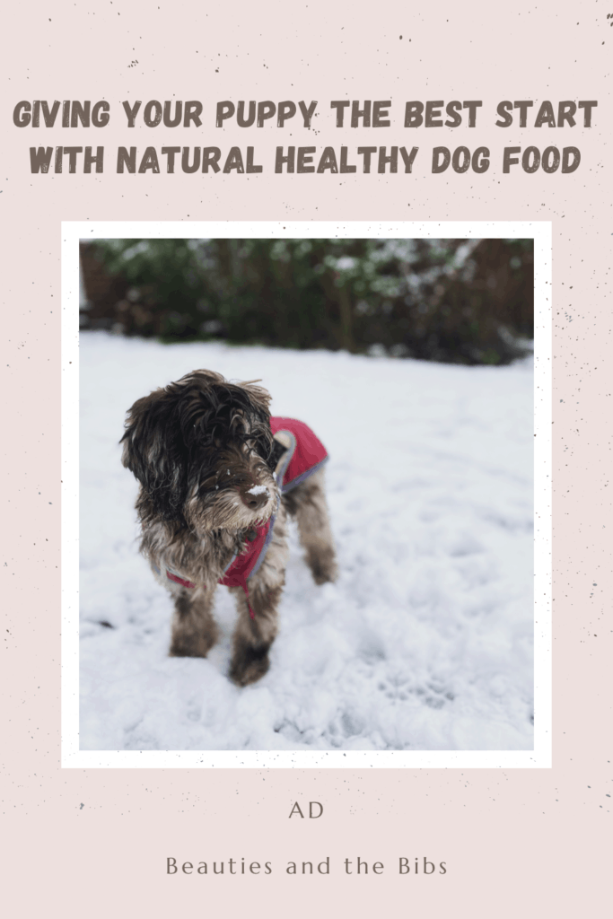 Give your puppy the best start with natural healthy dog food #puppy #dogfood #natural #naturaldogfood #healthy